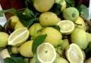 Le produzioni agrumicole italiane