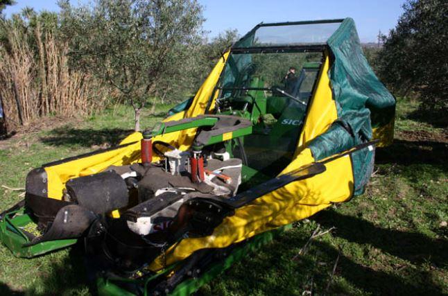 La raccolta delle olive: meccanizzando si risparmia
