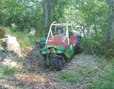 Focus sulla trifruit 85 hp della facma for Raccogliere castagne
