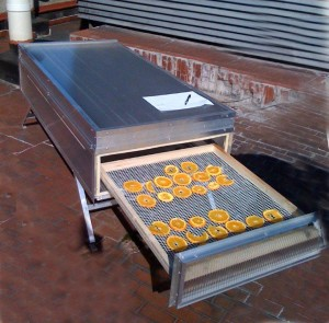 essiccatore solare-citrus