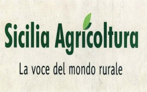 SICILIA AGRICOLTURA LOGO 3
