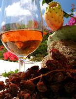 passitaly vino