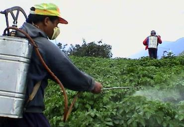 fitofarmaci-tossici