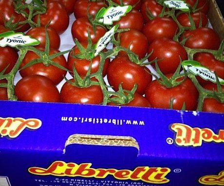 pomodori ciliegino libretti