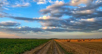 Cosa prevede la finanziaria 2018 per l'agricoltura